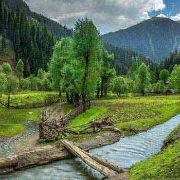 Magical Kashmir with Sonamarg Tour Package