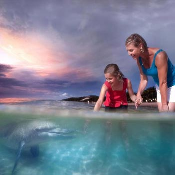 Tangalooma & Gold Coast Adventure Tour