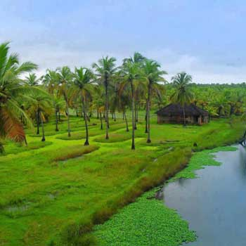 06 Nights / 07 Days Kerala Tour