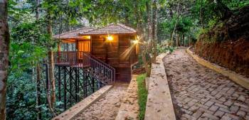 02 NIGHTS / 03 DAYS WAYANAD WITH THE TURMERICA ( TREE HOUSE ) TOUR PACKAGE