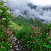 Valley Of Flowers Trek 8 Nights / 9 Days Package