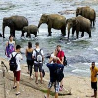 Best Sri Lanka Tour