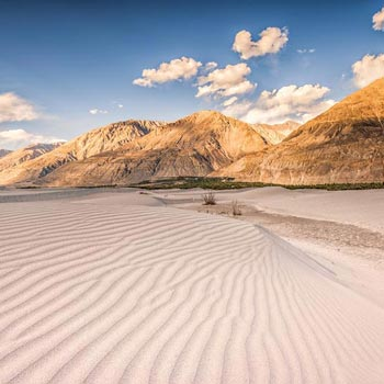 The Mesmerizing Pangong & Nubra Package
