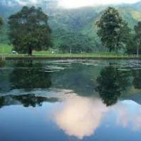 Day Trip - Siliguri Package