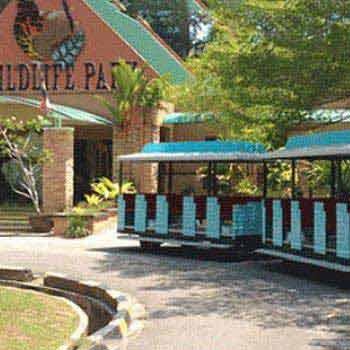 North Borneo Railway 1 Day Trip Package