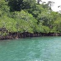 Twin Island Adventure Tour