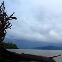 Game Fishing Trip to Cinque Island Tour