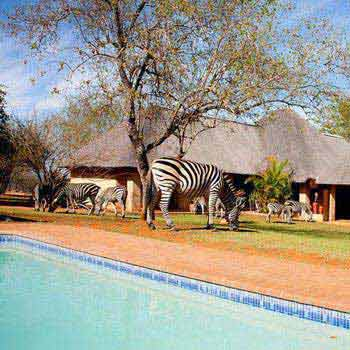 Botswana, Victoria Falls and Kruger National Park Tour