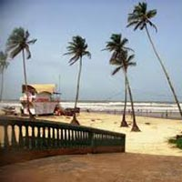 Whispering Woods North Goa Tour