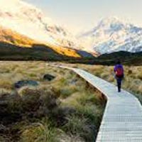 New Zealand - Northern Escape 4 Nights / 5 Days