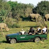 Garden Route Safari Self Drive Tour