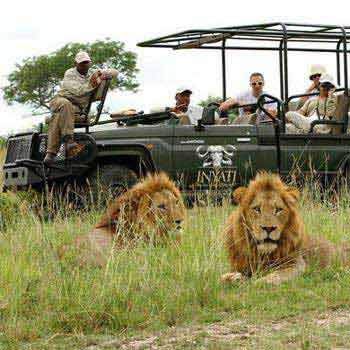 Kruger Safari - Cape Town - Luxury Rovos Rail Train Tour
