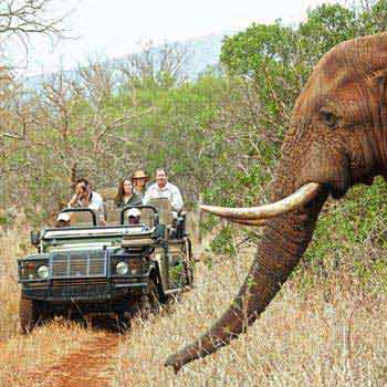 Kruger Walking Safari - Drakensberg Tour