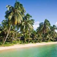 Madagascar: Perinet - St Marie - Anjajavy Tour