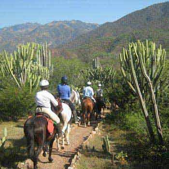 Mexico Horse Riding: Colonial Highlands Tour