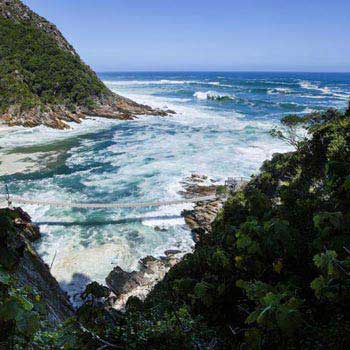 Garden Route Private Tour - Cape Town Tour