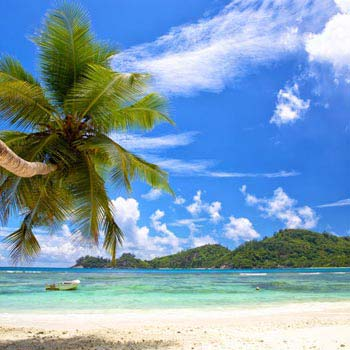 Three Seychelles Islands: Mahe - Praslin - La Digue Tour