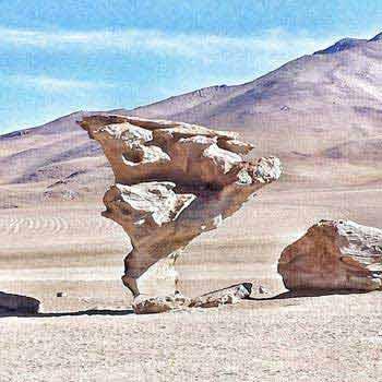 Essential Chile: Santiago - Atacama - Valparaiso Tour