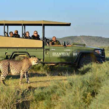 Cape Town - Winelands - Karoo Wildlife Reserve Tour