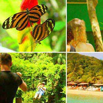 Zipline, Monkey Park, Botanical Garden & West Bay Beach Tour