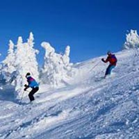 Enchanting Shimla Manali Tour