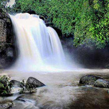 1 Day Khaoyai National Park & Trekking Tour