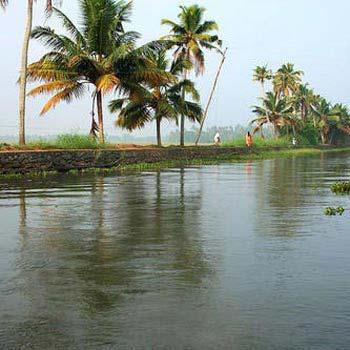 Cochin, Munnar Tour