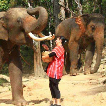 Chiang Rai Full Day Hill Tribes, Elephant, Boat Trip And Handicraft Tour
