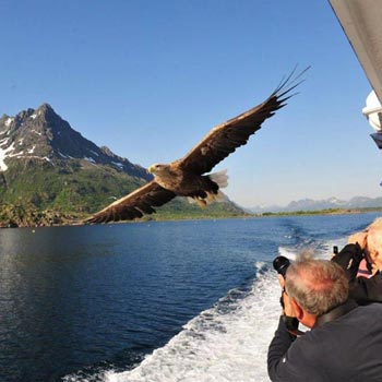 Norwegian Discovery Cruise Tour