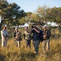 Botswana Into The Wilderness Tour
