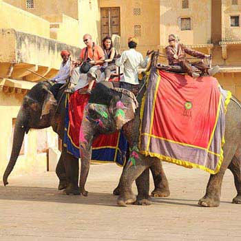 Golden Triangle Tour Package 4n/5d