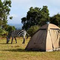 2 Days Trip to Lake Manyara National Park and the Ngorongoro Crater
