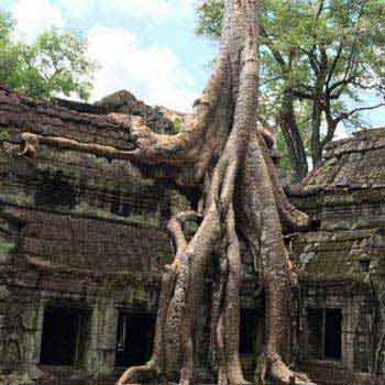 Around Cambodia Tours