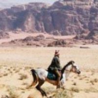 Petra to Wadi Rum Tour