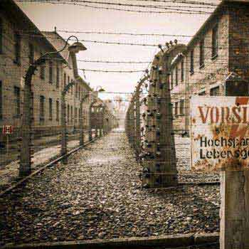 Auschwitz Nazi Camp Tour from Wroclaw Package