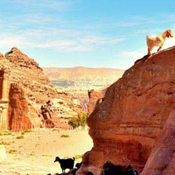 Petra Tour from Tel Aviv 2-Day Tour Package