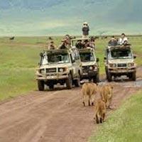 Nairobi to Kigali Overland Tours