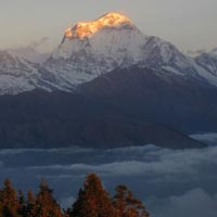 Nepal Experience Tour Package
