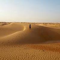 Desert Safari: a Must for People Visiting Uae Package