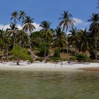 Mafia Island Package
