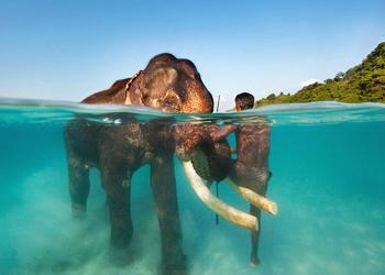 Andaman with Baratang Island Package