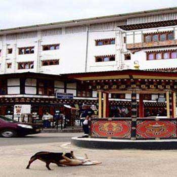 Short Trip To Bhutan Tour