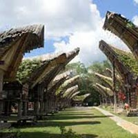 Toraja Culture and Nature Tour