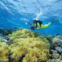 South & East Sulawesi Tour Package