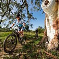 Diamonds & Dust Mtb Tour