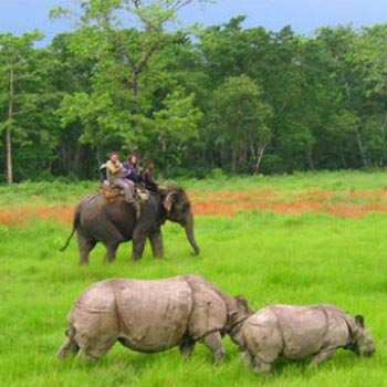 Chitwan Wildlife By Helicopter Tour