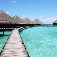 Journey to a Paradise Tour