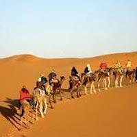 Sunset Camel Ride in Agadir Tour