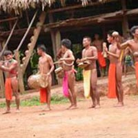 People of the Rainforest: The Embera Tour