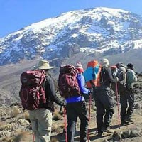 Kilimanjaro Adventure 6 Day Adventure Experience Package